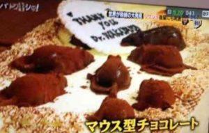 小保方晴子が研究者時代に作ったチョコケーキの画像