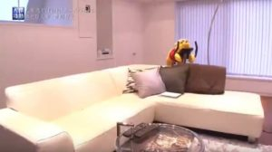 菅野智之の自宅のソファ画像