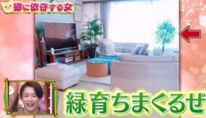 野崎萌香の実家の自宅画像