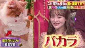 野崎萌香が猫にバカラを使って水をやっていることが紹介された画像